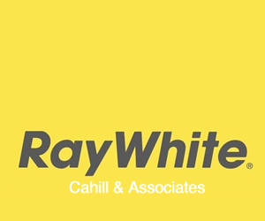300-ray-white.png